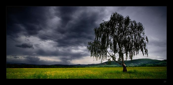 Stormy Weather by AaronLewis