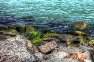 Land Meets Sea by Daemare