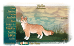 VALECLAN - Dawncloud, Medicine Cat by Altiasdog