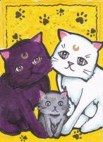 Luna, Artemis and Diana the Mooncats by MessiahDeath
