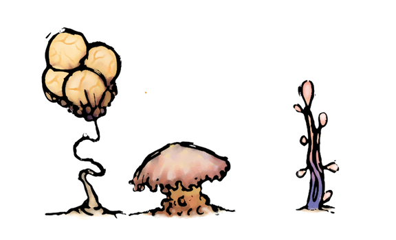 Fleshy plant concepts by Sonicrumpets