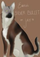 Eurico's Silver Bullet by 1-Foot-In-The-Grave