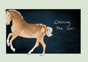 A1772 Chasing The Sun by Kaninkompis