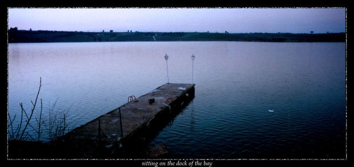 sitting on the dock of the bay by davi