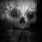 Wrong Turn by lostknightkg