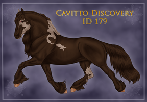 Cavitto Discovery 179 by ThatDenver