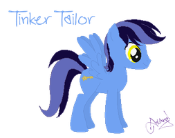 Tinker Tailor by Ameyal