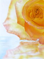 Yellow Rose 3 by deRaat