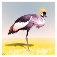 Crested Crane by wildpaintings
