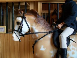 Breyer Bridle For Sale by CatWink