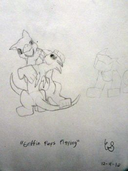 Griffin Pups at Play UNFINISHED by Accelsier