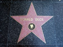 Donald Duck Star by jix