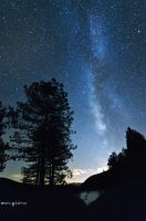 Milky way in the forest by MarioGuti