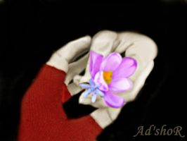 2 hands and a flower by ad-shor