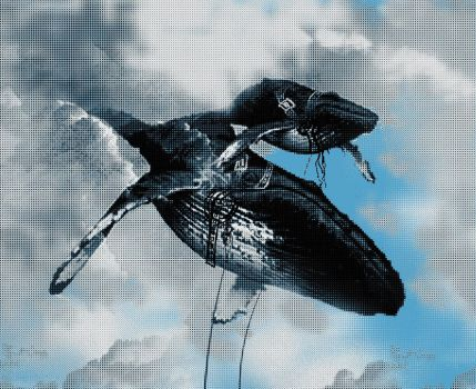 Defying Gravity whales by Buzatron