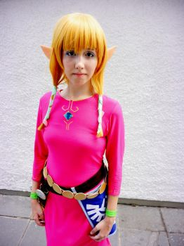 Skyloft Zelda 8 by pabas