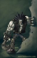 LOBO COLOR by redeve
