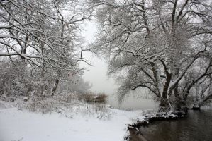 winter_landscape_stock by hookywooky