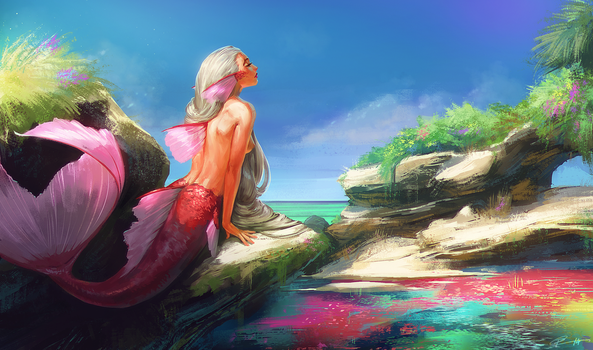 Siren's Cove by Roggles