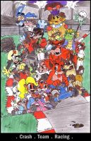 .CRASH TEAM RACING. by silversister