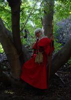 Raistlin: Solace by thenumber42
