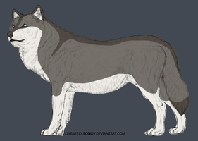 Wolf Adoptable 1-closed- by Angelwolf-95