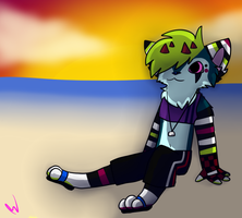 Sunset Beach: Doodle Wars Entry 2 by Xx-AnickJukebox-xX