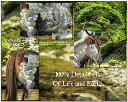 Of Life and Earth, Deatils by Sarahroo