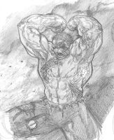 Hulk Warm-up 02-16-10 by anthonyharrisart