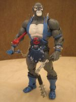 PANTHRO THE LOYAL FRIEND by efrece