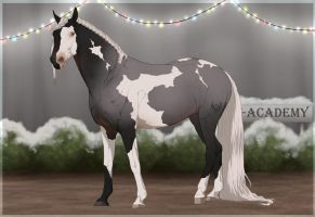 Traaker Import 121 | Custom by BRls-love-is-MY-Live