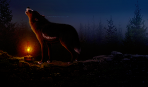Pere in the Lantern Light by foxipaw