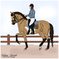 DHE Pink Dressage Silence by MTAcademy