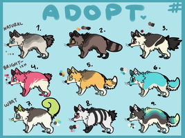 Adoptables. by motted