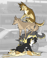 Dog Pile by LaceWhite