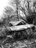 Car: Overgrown and totalled 2 by riddlerj