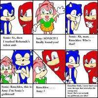 knuckles meets amy rose by mokomel