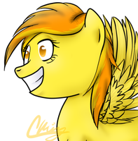 Crazy Spitfire by Pinkie321Pie
