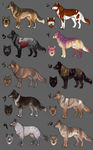 [now accepting POINTS!] Coydog Adopts (open) by umbrafen