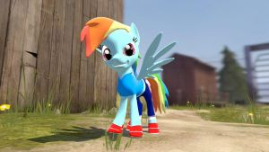 Dashie's new attire by TBWinger92
