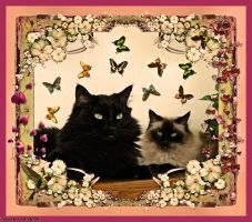 For Allie...SURPRISE.... by Tigles1Artistry
