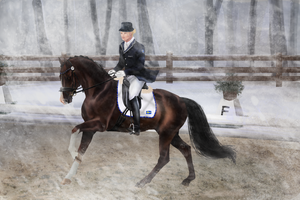 RWES Event // Dressage by PartilleHSC