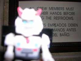 A message from Prowl by Pharaoh-Yami