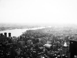 New York from Empire by bradwright