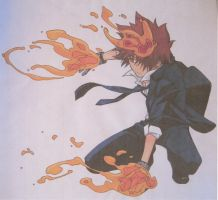 Tsuna Caught Fire! by FeenixDOWN