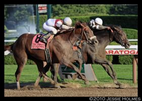 Afleet Express Wins Travers by Jessie-kad