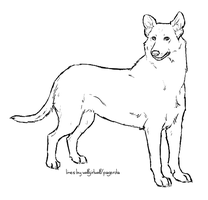 Lineart: Smooth Collie by Pred-Adopts