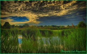 Hungarian landscapes.HDR-picture(photo series)22. by magyarilaszlo