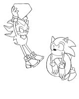 Sonic and Shadow by Snivy94