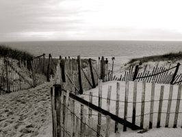 fence on the beach I by star--crossed